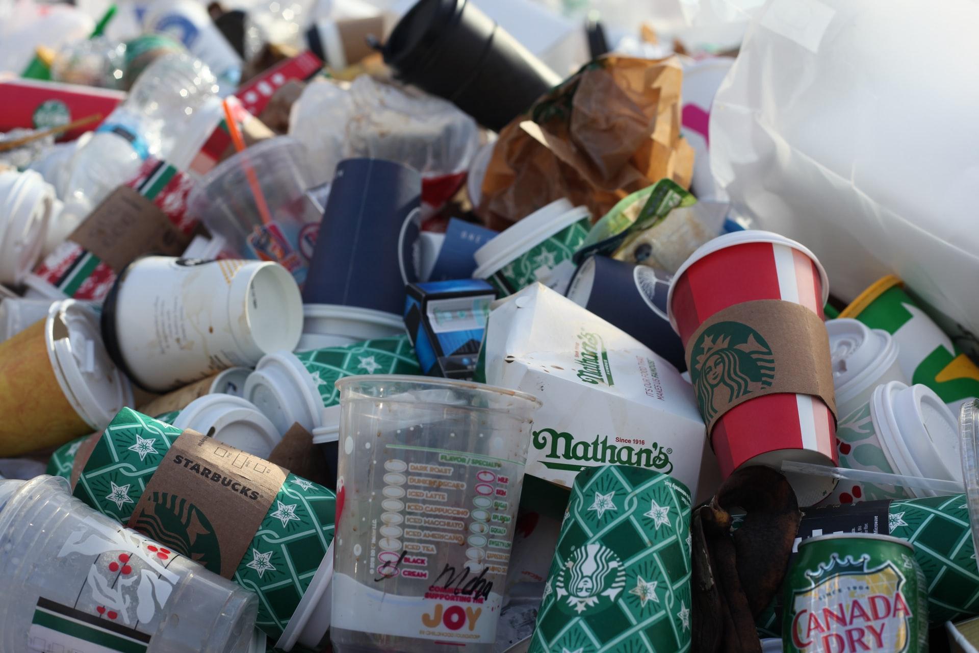 Trois initiatives solidaires pour lutter contre le gaspillage alimentaire